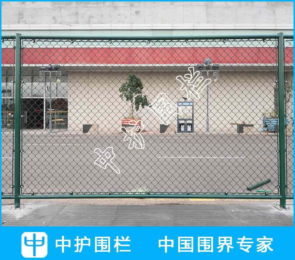 深圳市鱼尾狮儿童教育有限公司球